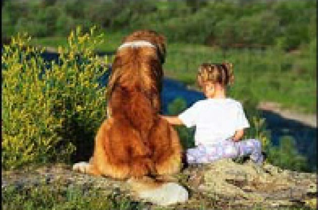 Cani contro l'epilessia