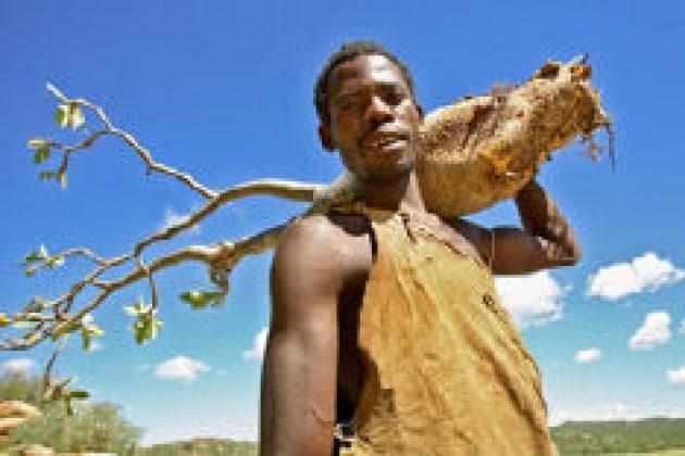 A caccia con l'uomo preistorico