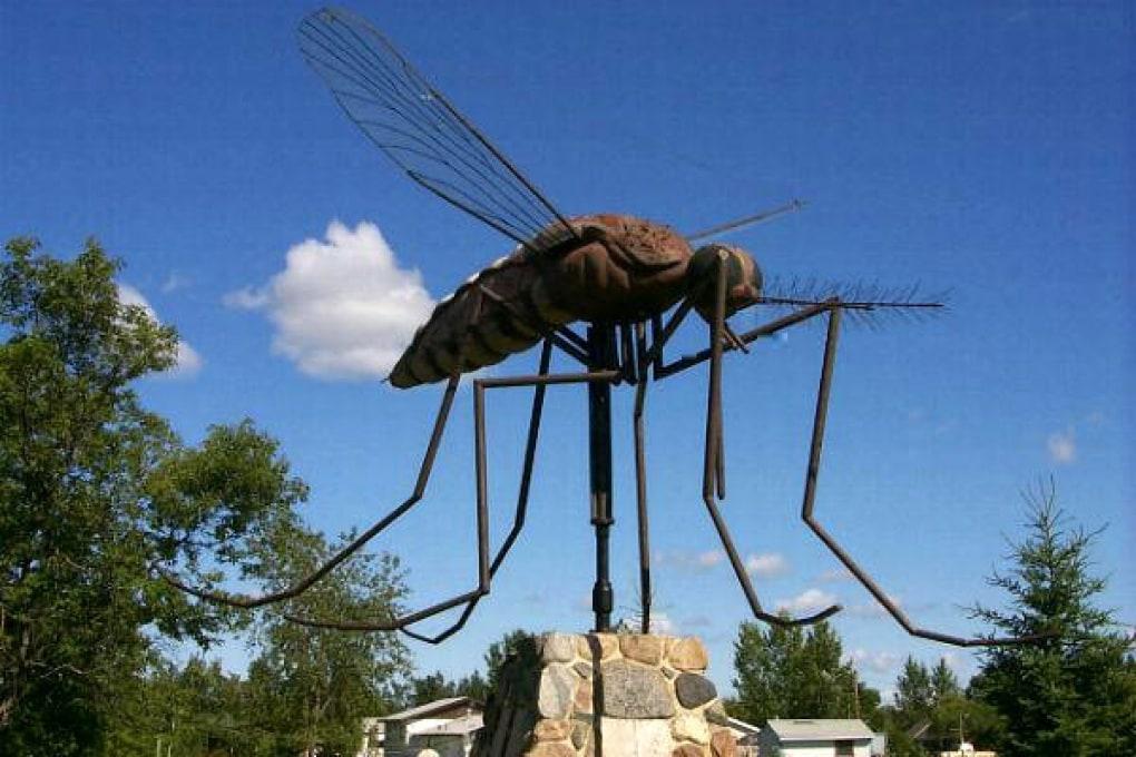 Gli insetti che hanno fatto sparire i dinosauri