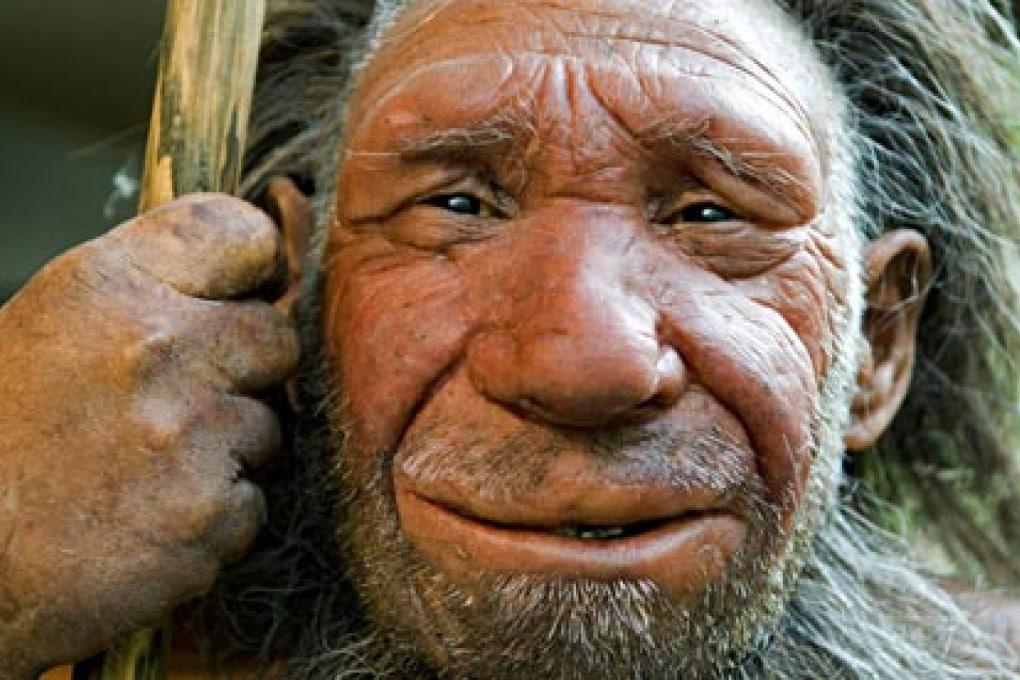 Il tartaro dei Neanderthal rivela indizi sulle prime cure erboristiche