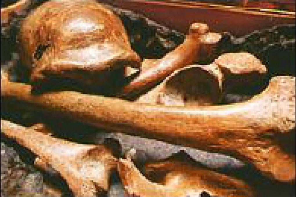 I primitivi non scagliavano le lance