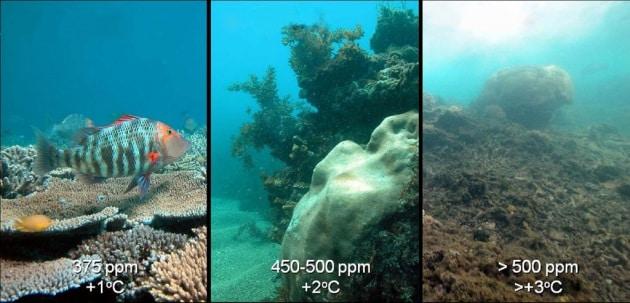 Riscaldamento globale e CO2: il danno è fatto
