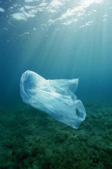 Come si decompongono i sacchetti?