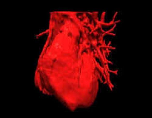 Non avere cuore fa male al cuore