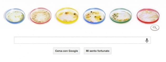 Il Doodle di Google per Petri e le sue piastre