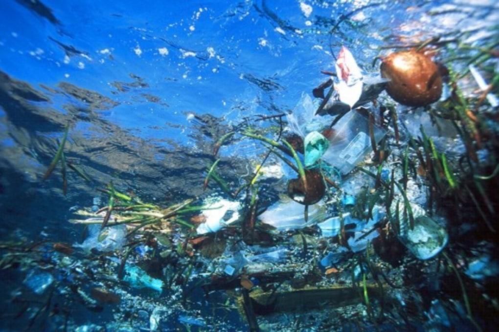 Raccogliere la plastica dagli oceani per farne aspirapolvere