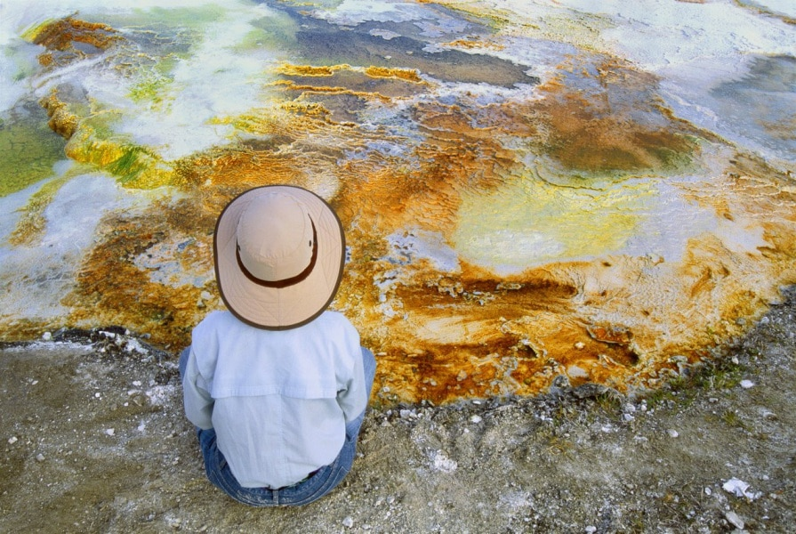 Tutta la bellezza del parco di Yellowstone