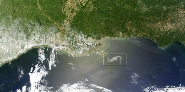 Marea nera, storia dell'eco-disastro Usa