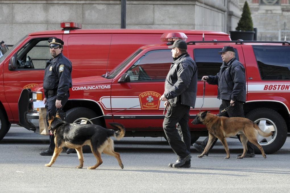 Come si addestrano i cani anti-bomba?
