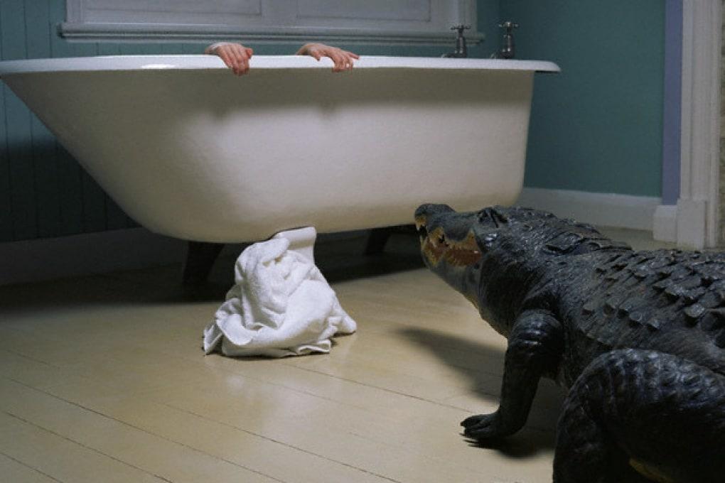 Aiuta Swampy l'alligatore a riempire la sua vasca!