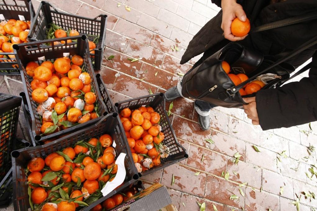 Giornata Mondiale dell'Ambiente: diamo un taglio agli sprechi di cibo