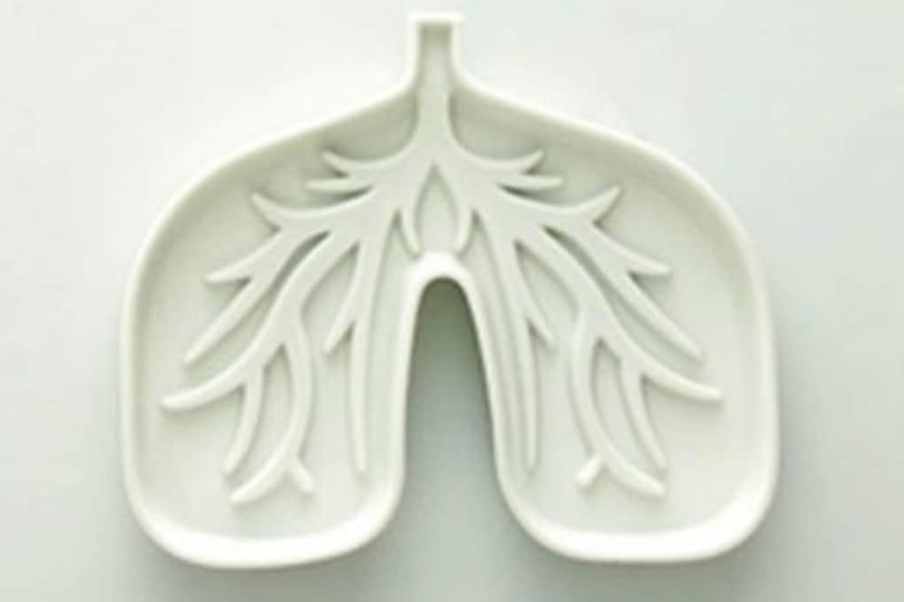Il mini polmone artificiale che respira aria