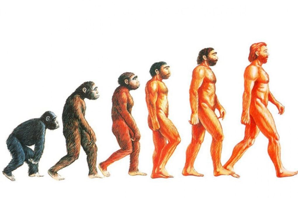 L'uomo di Neanderthal tornerà davvero in vita?