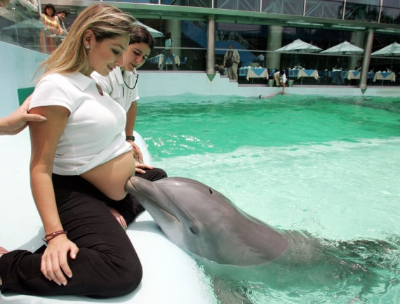 medicina, terapie inutili: la delfinoterapia prenatale