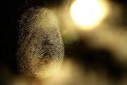 fingerprint_200234