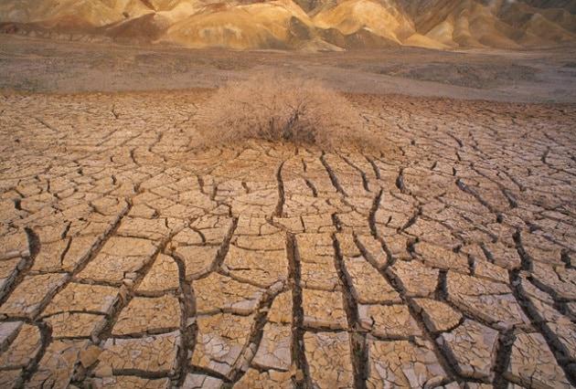 Dove è stata registrata la temperatura ambientale più alta?