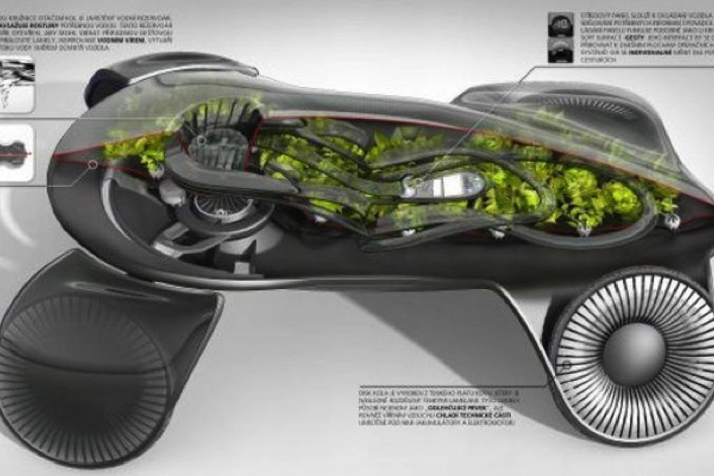 Auto verde di nome e di fatto
