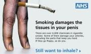 smokingdamages-580x348