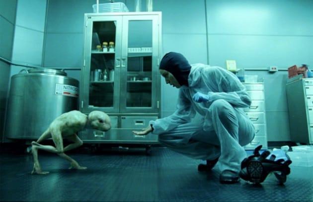 L'horror fantascientifico Splice esce a giorni negli Usa