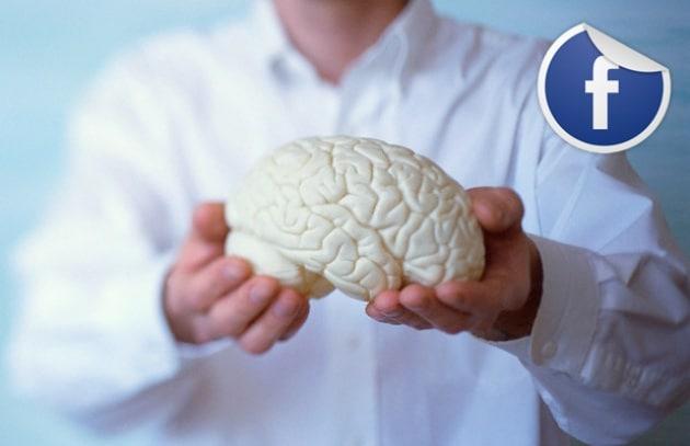 Tanti amici su Facebook? Hai un gran cervello!