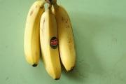banana_175438
