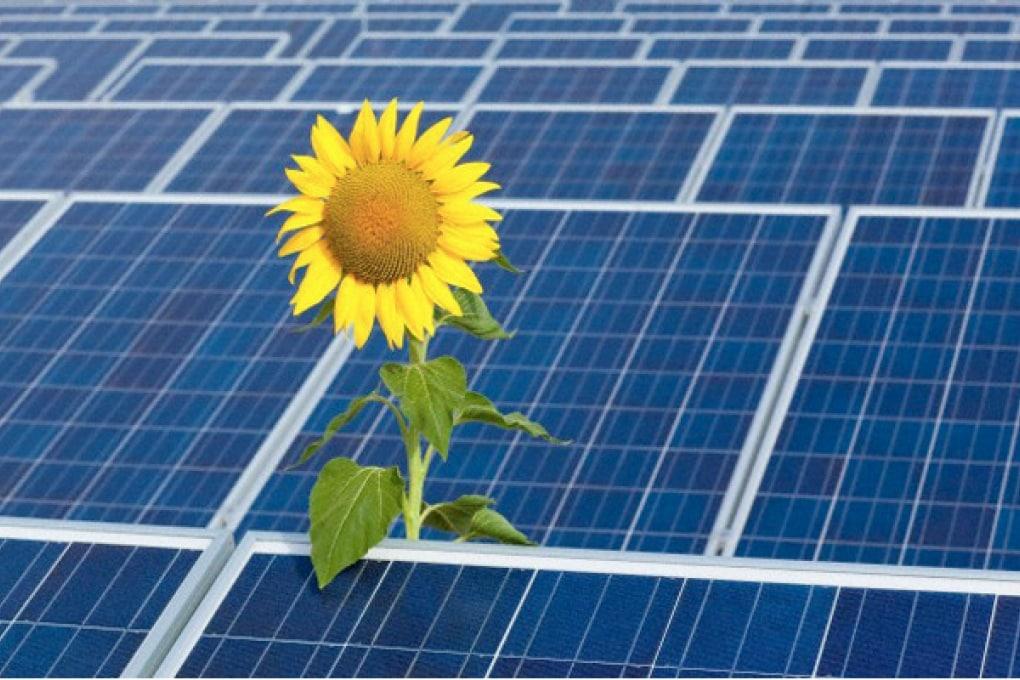 IBM investe nei data center a energia solare