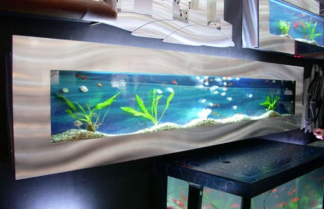 Design un acquario da parete for Acquario da parete
