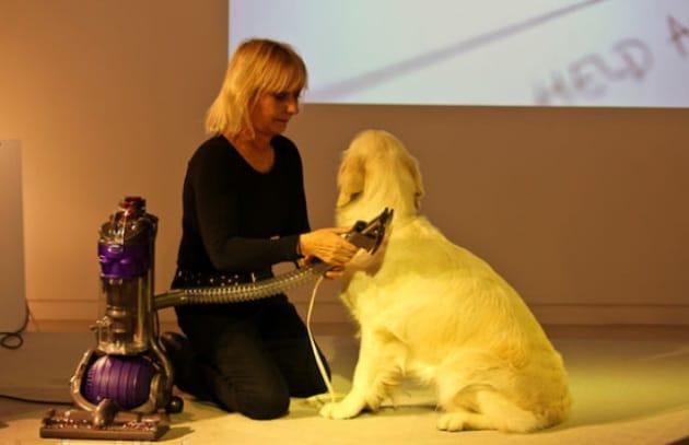 Il gadget per usare l'aspirapolvere sul cane