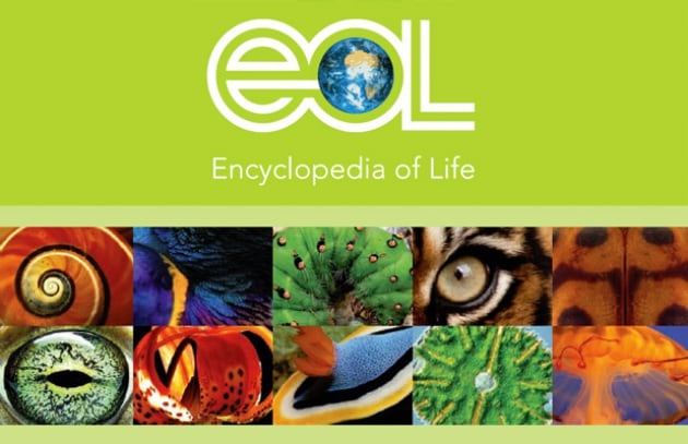 encyclopedia-of-life_211321