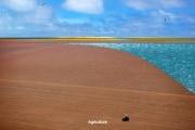 isola-di-plastica_165061