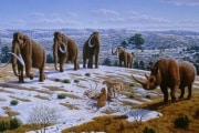 pleistocene-park_184683