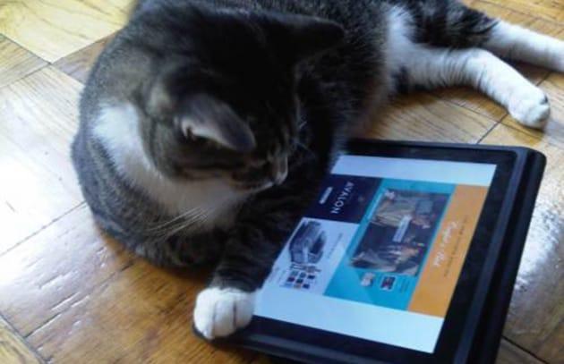 Dieci modi per riciclare il tuo vecchio iPad