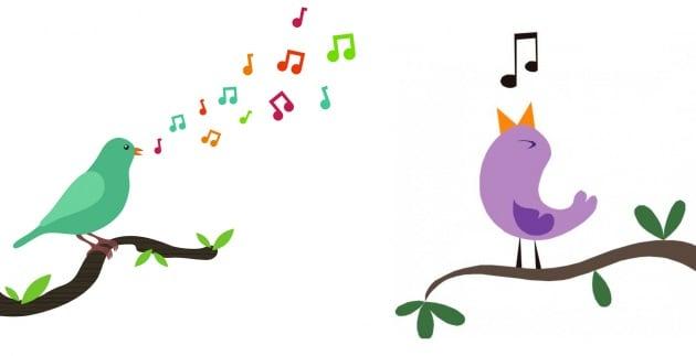 Il canto degli uccelli all'alba