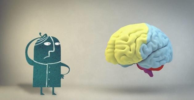 Il falso mito che vorrebbe che usiamo solo il 10% del nostro cervello