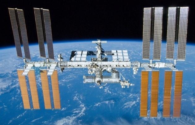 Plancton marino sulla ISS? La scoperta (da verificare) degli astronauti russi