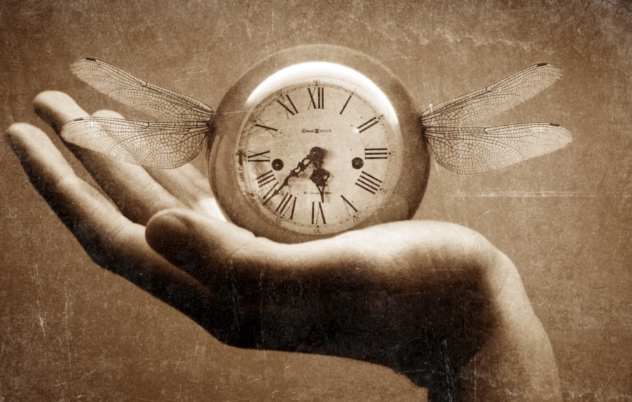 time-is-fleeting