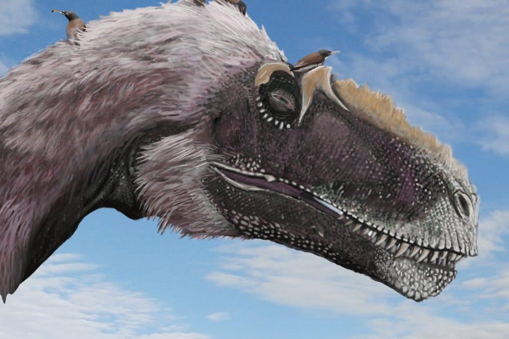 Perché i dinosauri sono diventati uccelli?