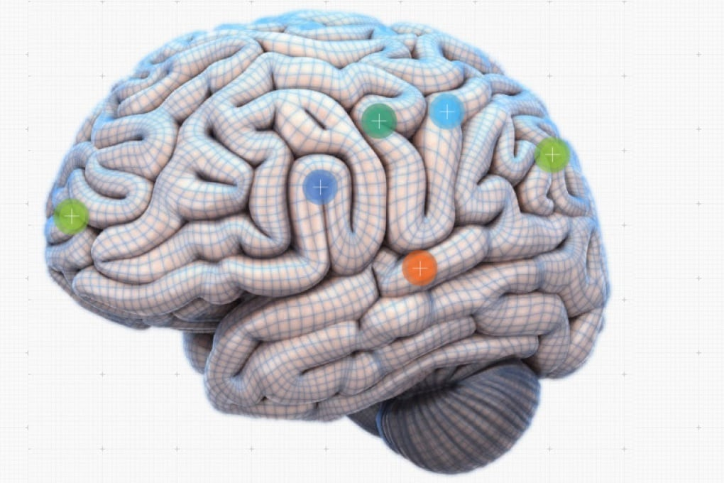 Your Brain Map: il cervello in un'infografica interattiva