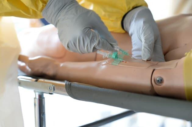 Ebola, primati protetti da due vaccini