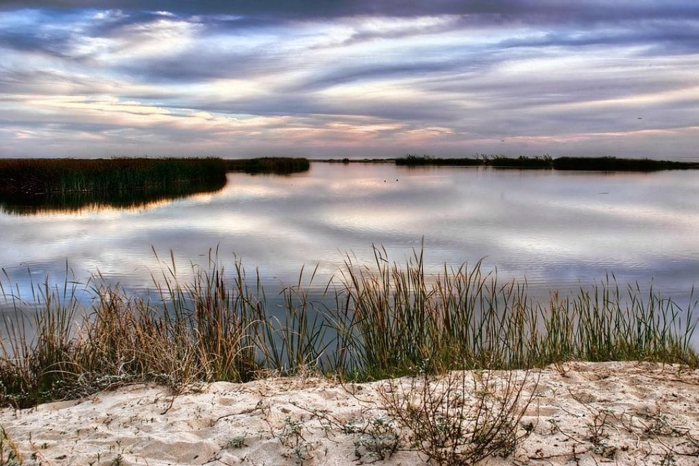 Torbiere, laghi e paludi: è la Giornata Mondiale delle zone umide