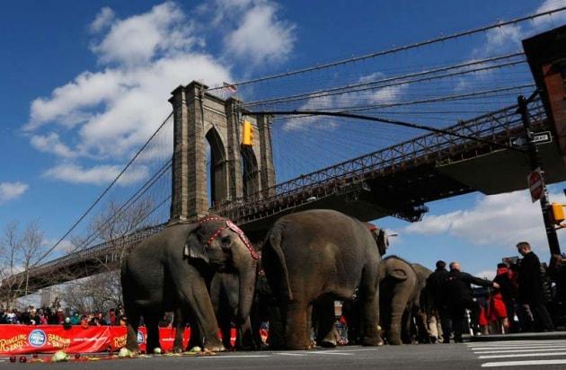 10 cose che (forse) non sai su New York
