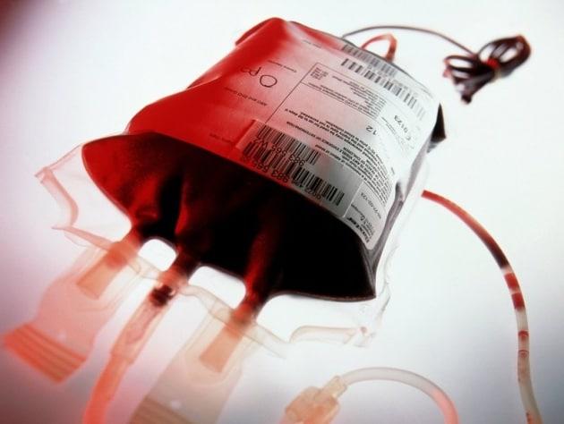 Risultati immagini per trasfusione sangue da giovani