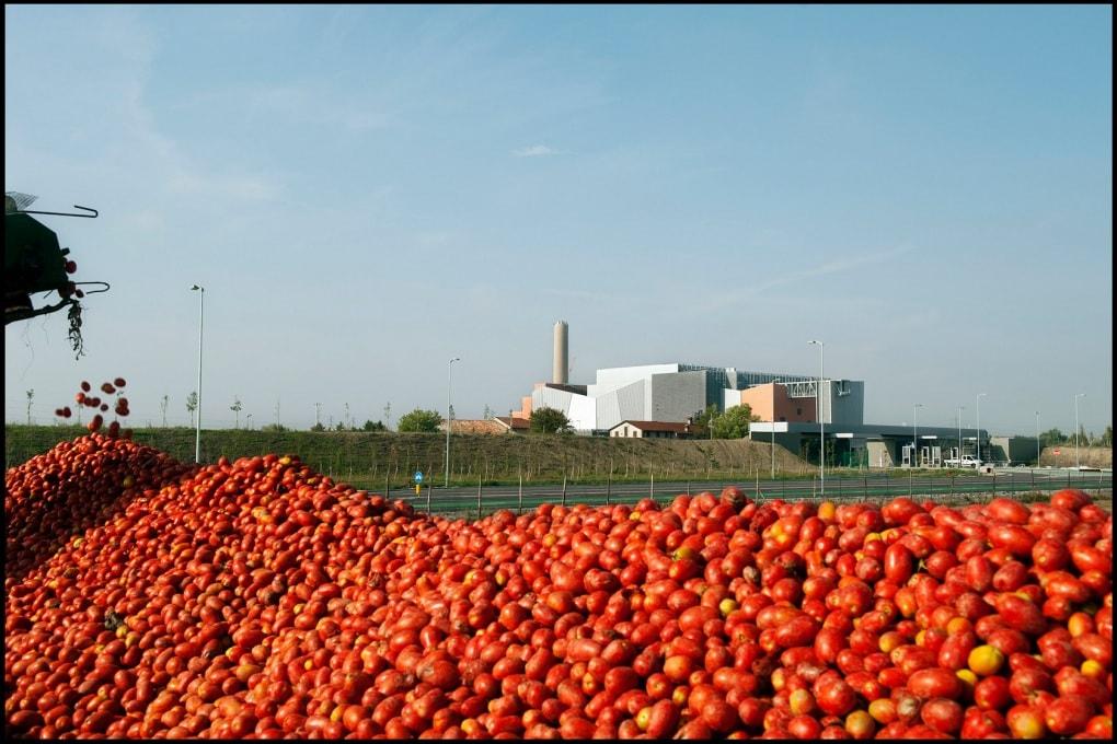 Spreco alimentare: i numeri della Fao e la Carta di Milano