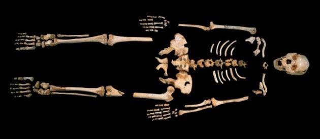 Il DNA umano più antico riscrive la storia dei nostri antenati