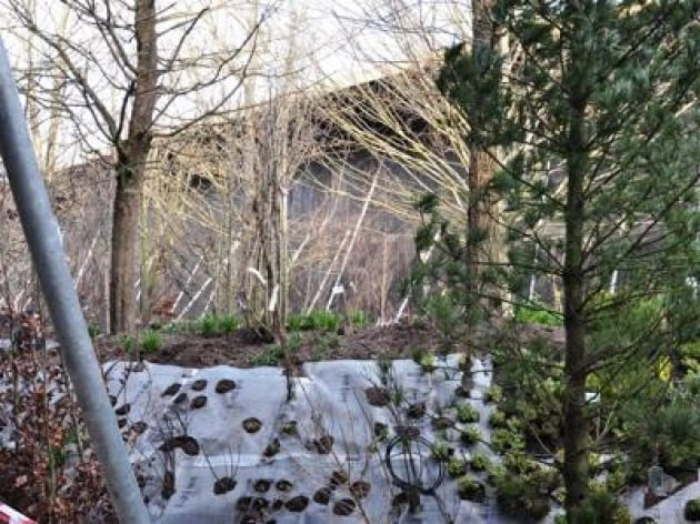 Expo il 39 bosco 39 del padiglione austriaco tra natura ed for Costo del padiglione per piede quadrato