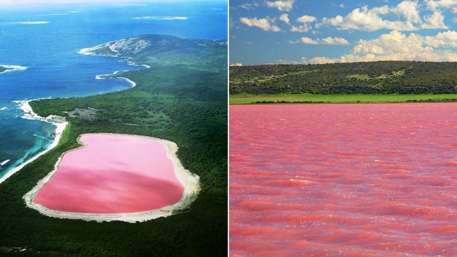 pink-lake-wallpaper
