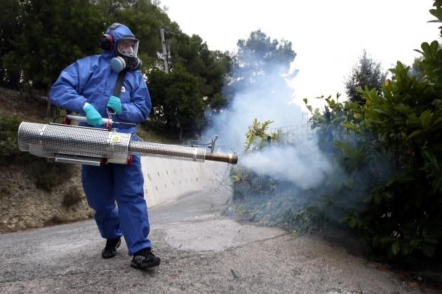 Tutto quello che c'è da sapere sulla Chikungunya
