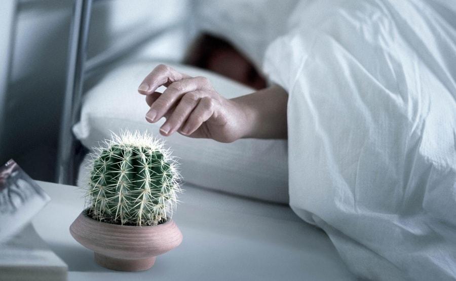 Dodici cose da fare e non fare mezz 39 ora prima di andare a dormire - Cose piccanti da fare a letto ...