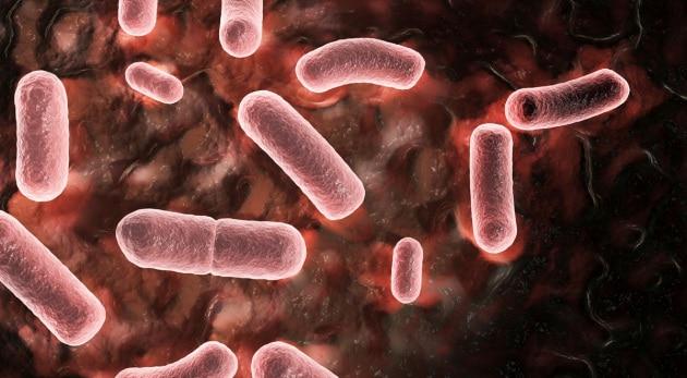 cor_42-38847181_yersinia-pestis