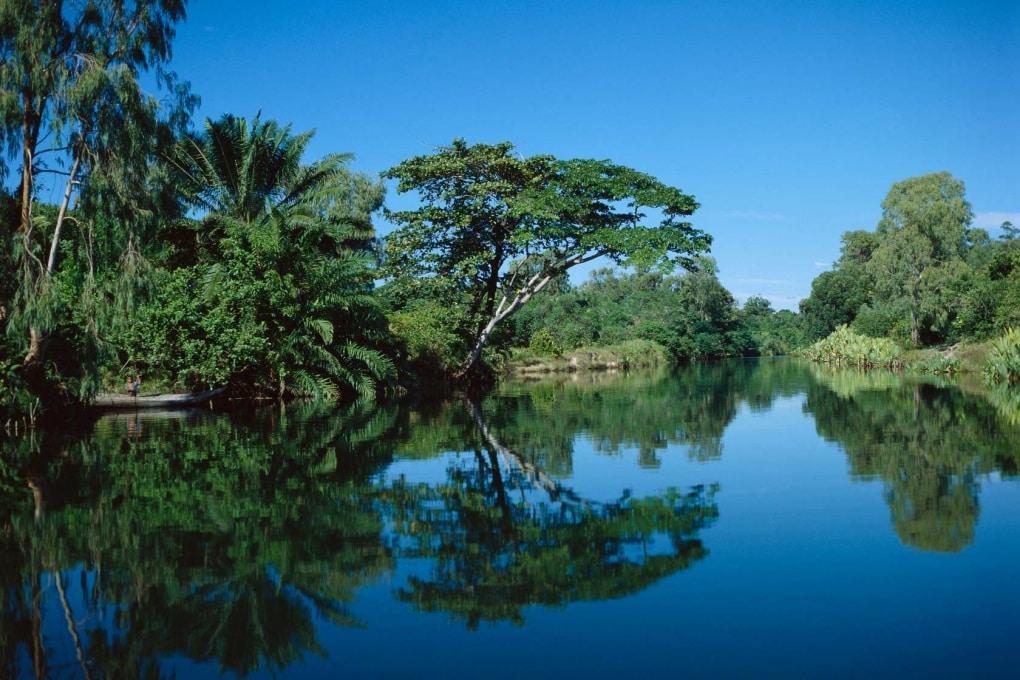 Cos'è la biodiversità